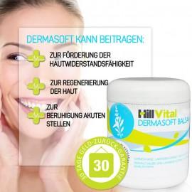 Dermasoft - Salbe gegen EKZEM (250 ml)