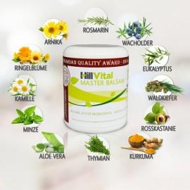 Master Balsam bei Gelenk-, Muskel- und Rückenschmerzen (250 ml)