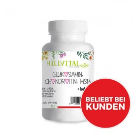 Glucosamin, MSM, Chondroitin (60 Stk.)