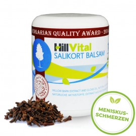 Salbe bei Meniskusschmerzen - der Salikort Balsam 250 ml