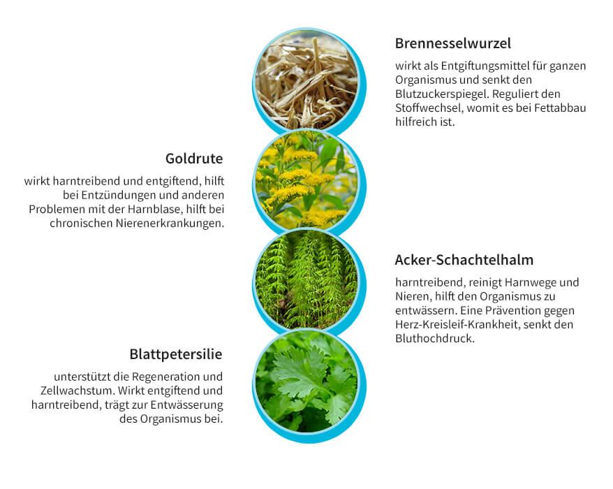 Kräutermischung zur Nierenreinigung und Entwässerung